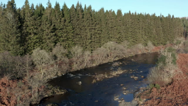 High angle view of a river running through an area of pine forest with frost on the ground 4K drone footage of a river and forestry in the remote countryside of rural Dumfries and Galloway, south west Scotland. This part of the country is used for pine forestry and popular with cyclists and walkers. galloway scotland stock videos & royalty-free footage