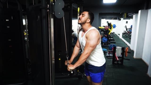 vídeos de stock e filmes b-roll de high angle view of bodybuilder doing arm exercise - músculo humano