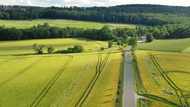 キャノーラフィールドと緑のフィールドの高角図 ビデオ