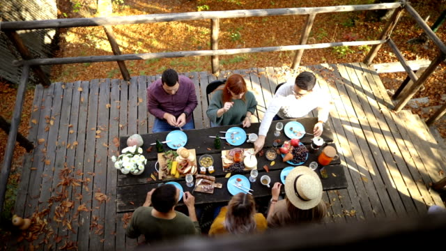 High angle view of forest picnic Group of smiling friends enjoys food and conversation at autumn picnic at weekend house table top view stock videos & royalty-free footage