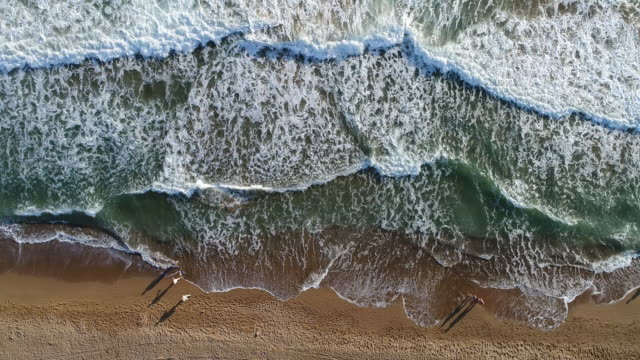 High angle view of people walking on the beach video