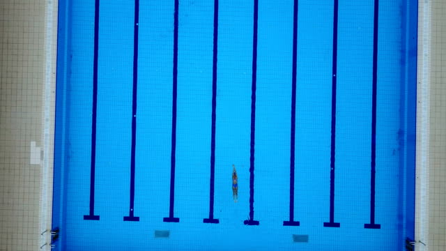 high angle view on swimming pool and female freestyle swimmer - distinguersi dalla massa video stock e b–roll