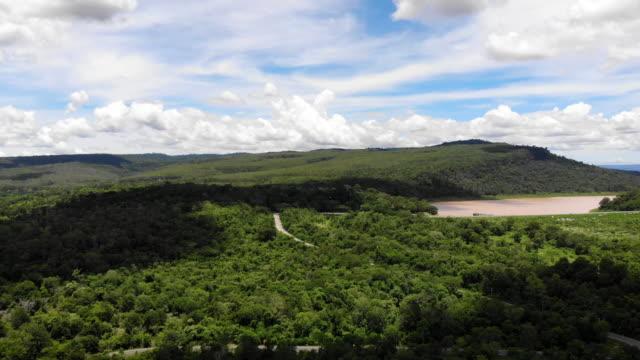 vídeos de stock, filmes e b-roll de visão de ângulo alto paisagem cênica da floresta tropical e da montanha, vista superior drone voando através da árvore no campo - multicóptero