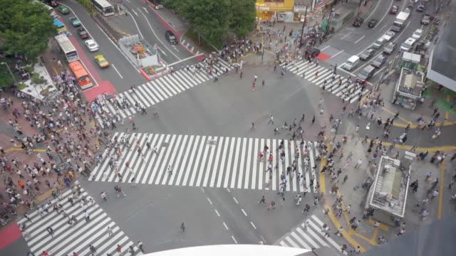 stockvideo's en b-roll-footage met hd hoge hoek te bekijken. shibuya crossing in tokio, japan. - dwarsweg