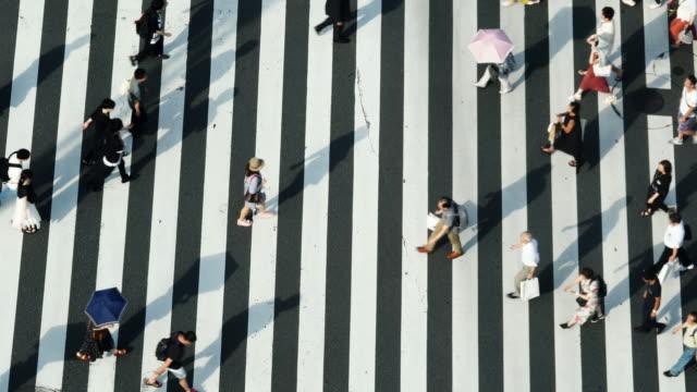 stockvideo's en b-roll-footage met 4k high angle view brede shot van voetgangers mensen man en vrouw lopen kruis de straat zebrapad met schaduw op de weg in de middag zomerdag in ginza, tokio, japan. - oversteekplaats