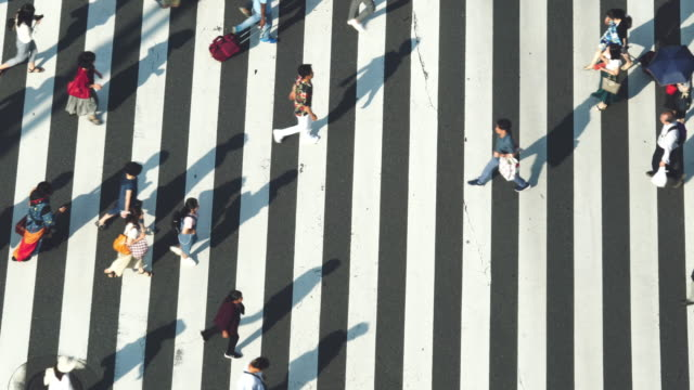 vídeos de stock e filmes b-roll de 4k high angle view wide shot of pedestrian people man and woman walking cross the street crosswalk with shadow on the road in afternoon summer day at ginza, tokyo, japan. - encruzilhada