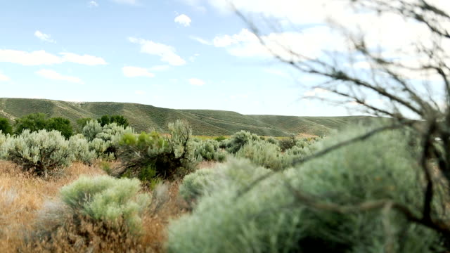 High desert hills video