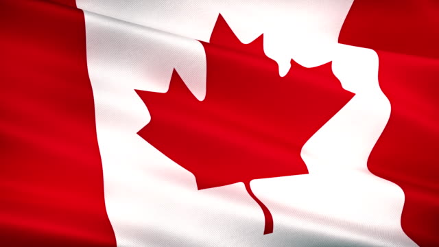 high detail canada canadian flag seamless loop - canada day stock videos & royalty-free footage