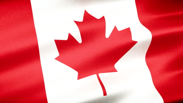 high detail canada flag seamless loop - canada day stock videos & royalty-free footage