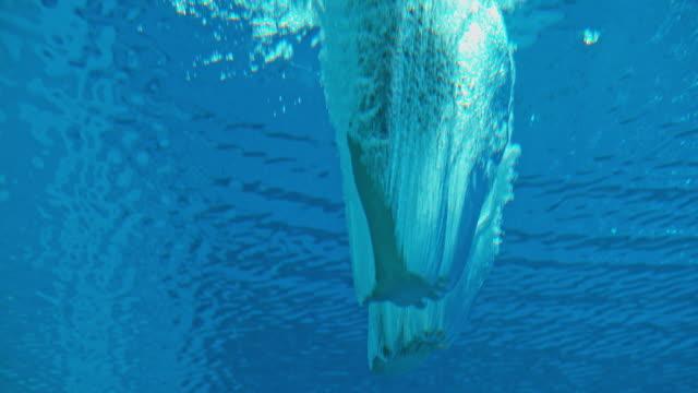 slo mo high diver underwater - дайвинг стоковые видео и кадры b-roll