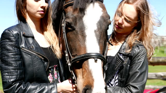 High five! A friend on a horse ride. video