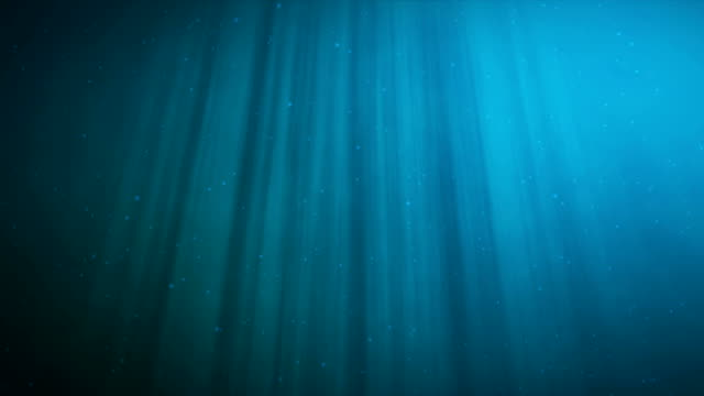 High quality animation of ocean waves from underwater with floating plankton. Light rays shining through. Great popular marine background HD, high definition 4k. High quality animation of ocean waves from underwater with floating plankton. Light rays shining through. Great popular marine background HD, high definition 4k scuba diving stock videos & royalty-free footage