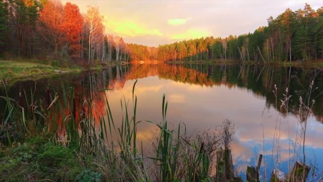 hög kvalitet timelapse, vacker skogssjö på majestätisk solnedgång. - finland bildbanksvideor och videomaterial från bakom kulisserna
