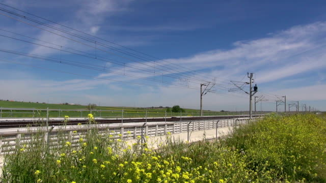 high speed train over yellow flowers video