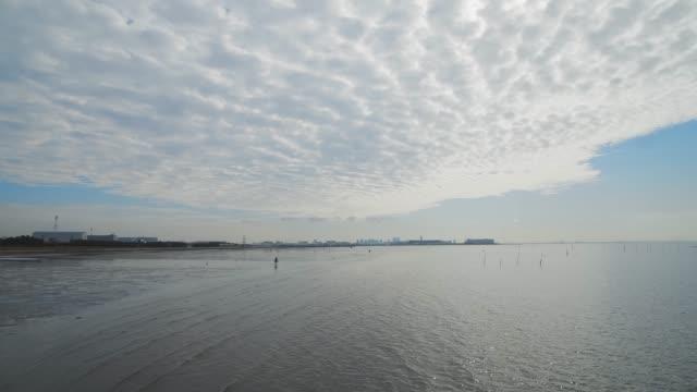 満潮から干潮(タイムラプス) ビデオ