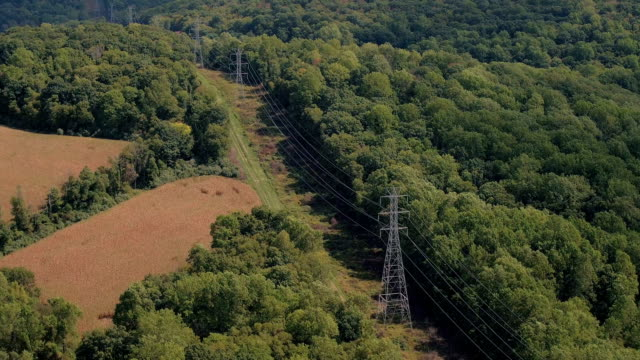 AERIAL: High voltage powerlines and electricity pylons running through forest