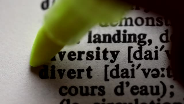 Highlighting the word DIVERSITY definition. Signaling the meaning of diversity video