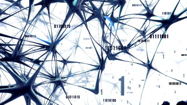 vídeos de stock e filmes b-roll de highly detailed neural network / artificial intelligence (white / blue) - loop - bit código binário