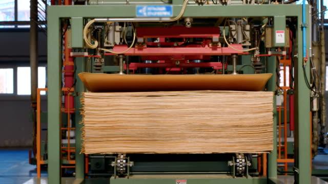 合板、合板および他の木材製品の生産のための木工工場でフルサイクルのハイテク生産ライン - 板点の映像素材/bロール