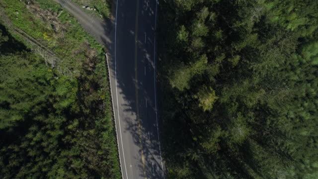 """vídeos de stock, filmes e b-roll de highway 101 """"pacific coast scenic byway"""" nas montanhas arborizadas nas proximidades de reedsport, oregon, no início da manhã da primavera. olhando para baixo, diretamente acima do vídeo aéreo do zangão com o movimento garimpando da câmera. - viagens rodoviárias"""
