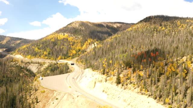 vídeos de stock, filmes e b-roll de estrada que corta através da floresta do pinho em colorado - condado de pitkin
