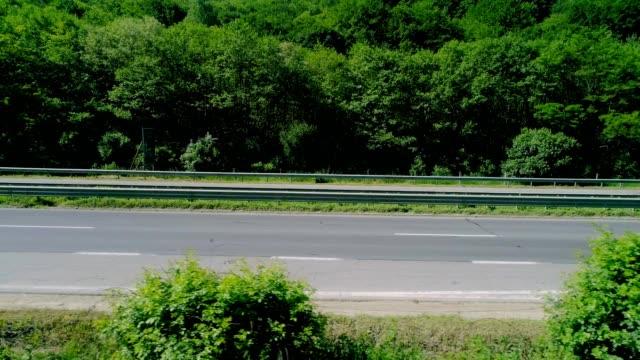 highway in the mountains - parte della pianta video stock e b–roll