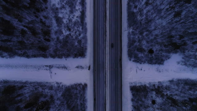 Highway in the winter forest in twilight