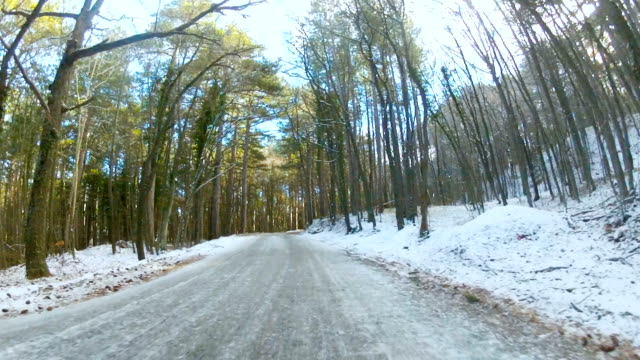 highway through a forest in winter, GoPro video