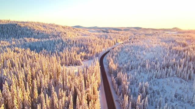 autobahn mit verkehr fahren durch einen schneebedeckten wald in bergpass im winter. - kieferngewächse stock-videos und b-roll-filmmaterial