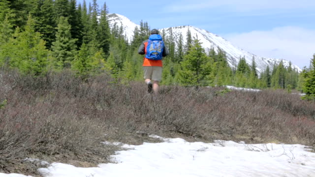 Hiker in the Rocky Mountains video