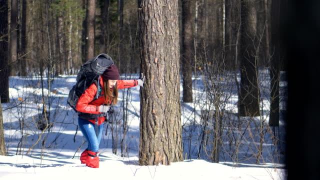 Hiker walking through a deep snow. video