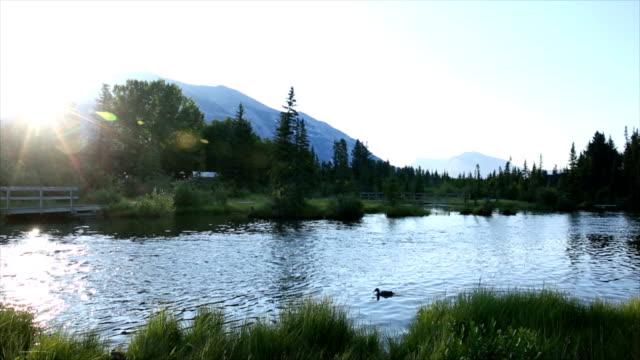 Hiker walks along mountain creek towards sunrise video