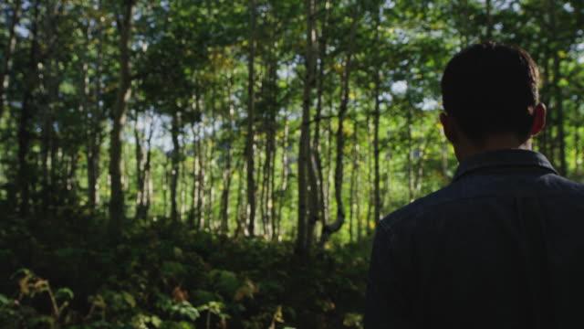 Hiker walks in mountain forest