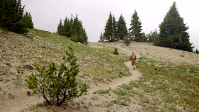 Hiker walks up big hill video