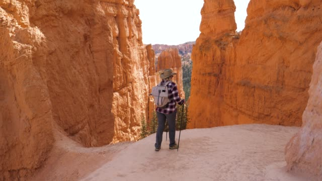 hiker woman begins goes down the route near the rock wall of the bryce canyon - parco nazionale video stock e b–roll