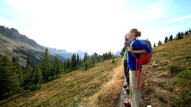 hikers admiring nature video