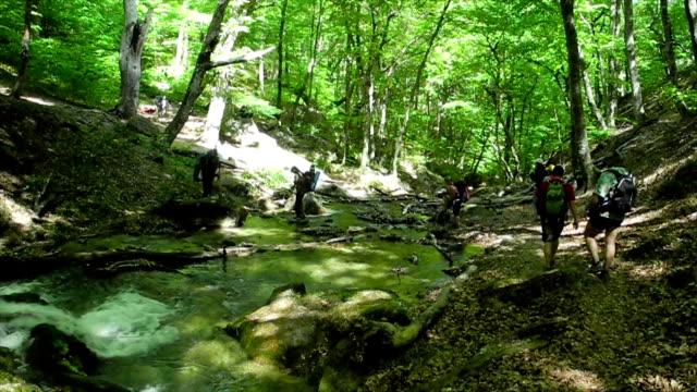 Hikers group trekking in Crimea video