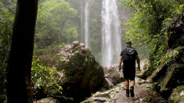 stockvideo's en b-roll-footage met wandelen in australisch regenwoud wandelen naar epische waterval - er even tussenuit
