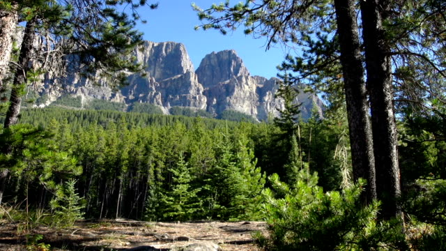 Hiking in Rocky Mountains video