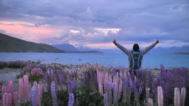 Hiking mountain on the Tekapo Lake raising hands in sunset video