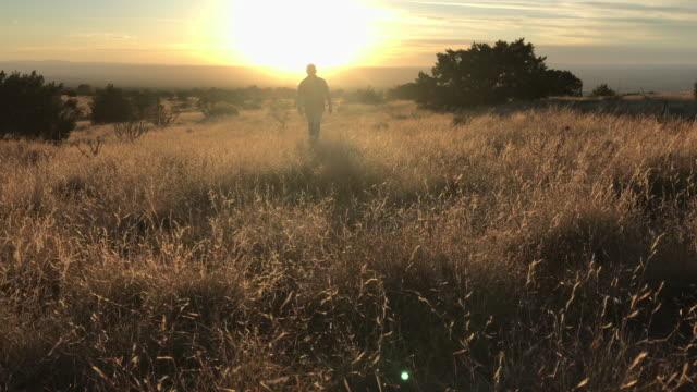 hiking nature landscape sunset - podświetlony filmów i materiałów b-roll