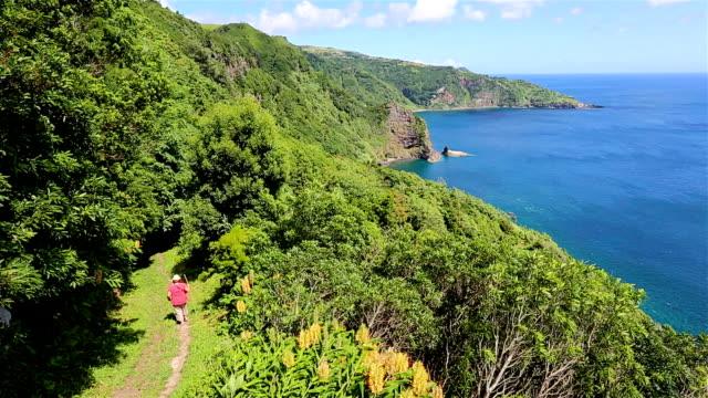 vídeos de stock e filmes b-roll de caminhada da ilha das flores-açores - montanha costeira
