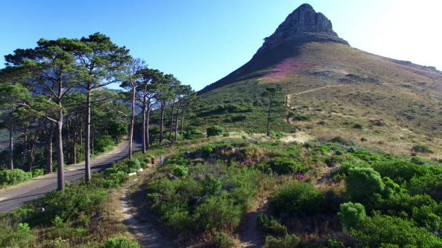 Hiking the Lion's Head Aerial drone footage of people hiking on Lion's Head mountain in Cape Town, South Africa cape town stock videos & royalty-free footage