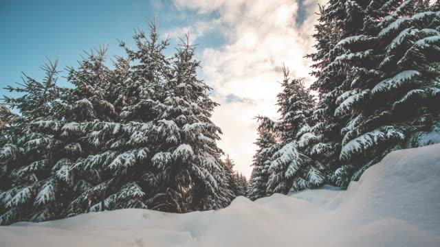 冬タイムラプスのハイキング コース - 動物に乗る点の映像素材/bロール