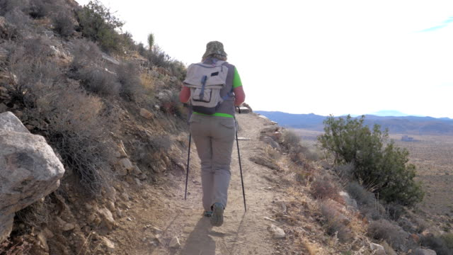 Hiking Woman Along A Mountain Path Along Cliff With The Help Of Trekking Stick video