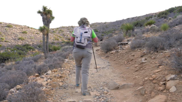 Hiking Woman Trail Goes Up The Hill Adjusts Her Cap, Back View, Slow Motion video