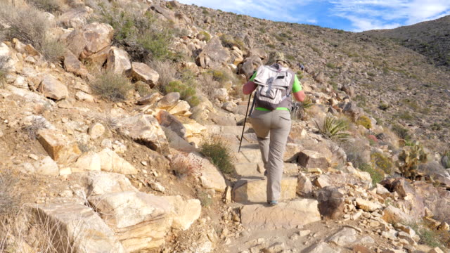 Hiking Woman Trail Goes Up The Hill With Trekking Sticks, Rear View, Slow Motion video