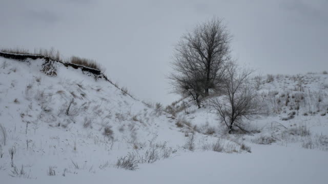 hills small mountains in the snow winter nature landscape outdoors Russia - vídeo