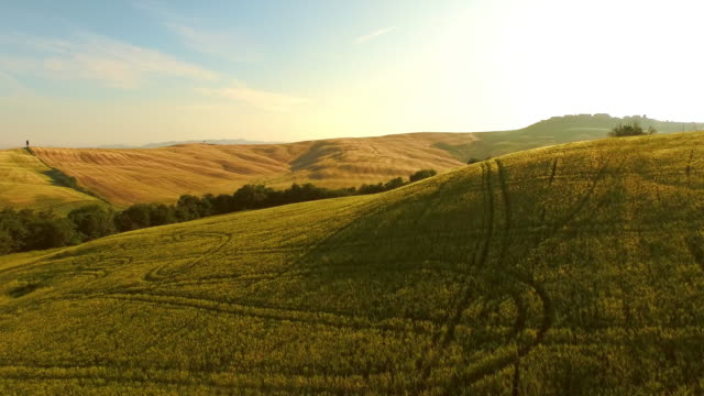 AERIAL Hilly landscape in Tuscany video