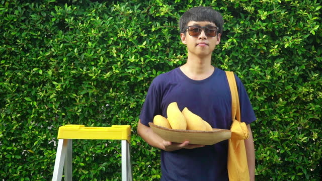 Hipster man holding a wooden basket with ripe mango fruits and a yellow tote bag  while standing beside a ladder against green leaves background.